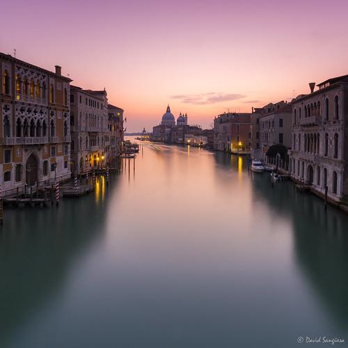 Venice Essence. [Explored & FP 02-15-2017]