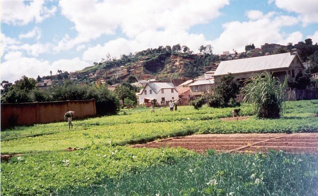 Madagascar2002 - 01