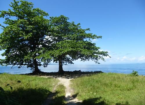 Papou13-Biak-Ile-Tour (66)1