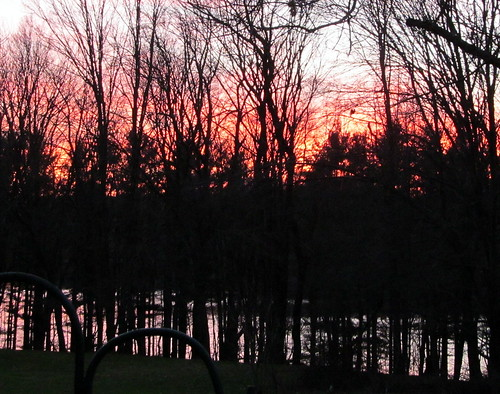 pink sunset putnamcounty treesilhouettes december2012 westbranchreservoir nycreservoir