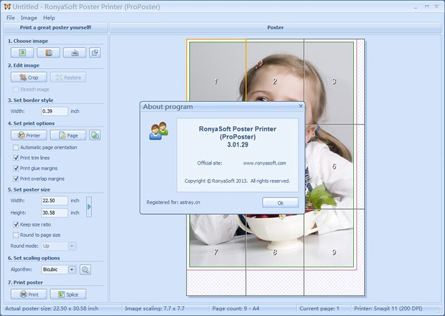 RonyaSoft Poster Printer (ProPoster) 3.01.29