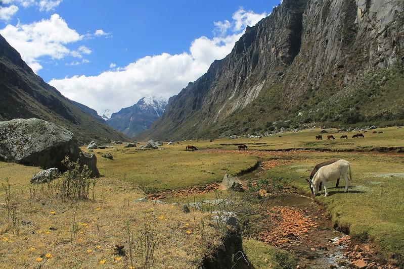 In Quebrada Quilcayhuanca