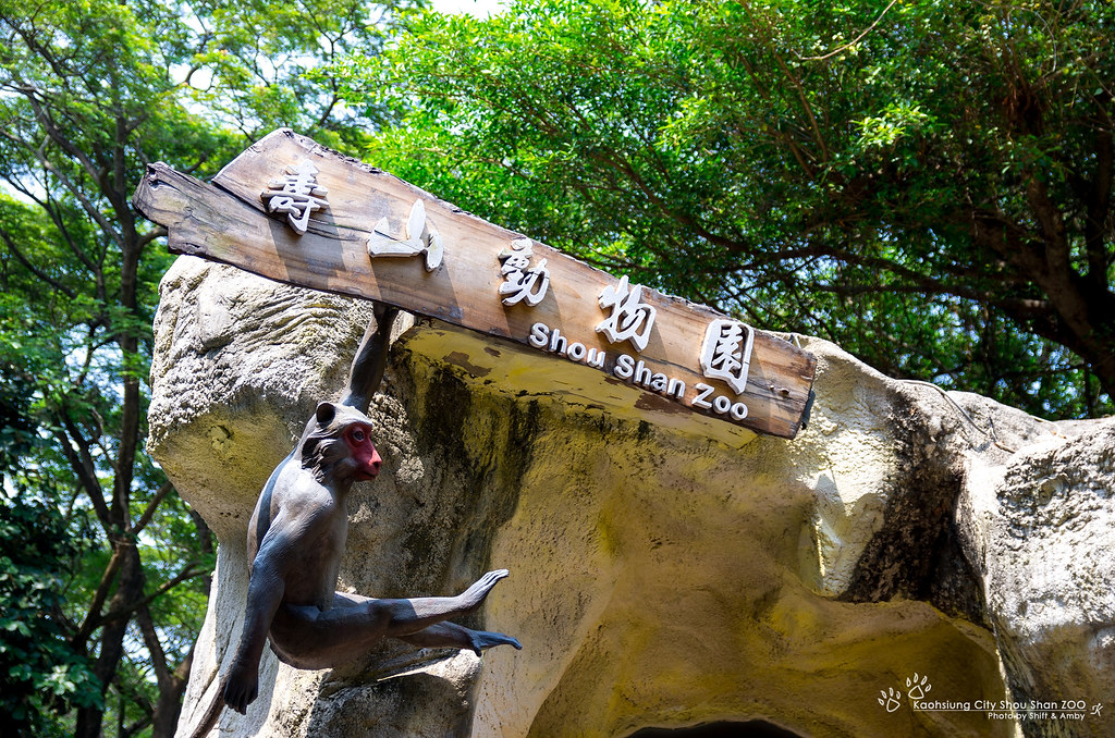 高雄壽山動物園Kaohsiung City Shou Shan ZOO (35P)