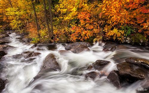 autumn lake newyork fall leaves creek canon hiking adirondacks foliage cascade keene placid 1740l adambaker 5dmkii
