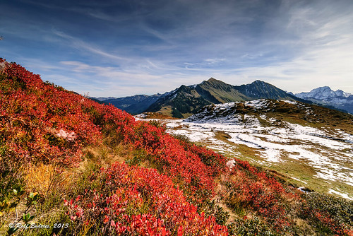 autumn herbst bregenzerwald herbstfarben goldenoctober renp furkajoch