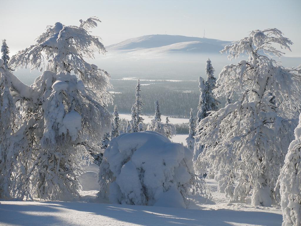 12. Paisaje invernal en la Laponia finlandesa. Autor, HibaHaba