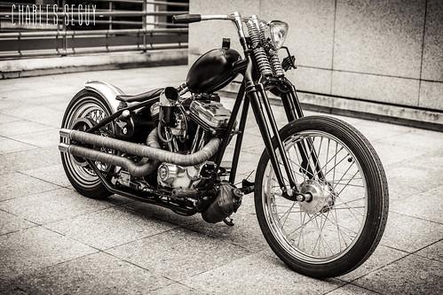 Harley Davidson 883 Kustom