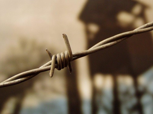 Conselho produzirá diagnóstico sobre ações relativas a conflitos de terra e trabalho escravo