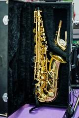 reed instrument, saxophone, brass instrument, wind instrument,