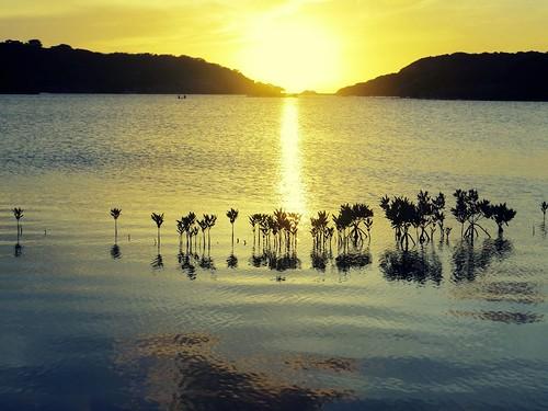 curaçao curacao caribbean sunset lake zonsondergang meer saliña salinja bocasami stmichiel topper cosmoclicky copper