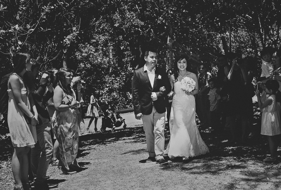 wedding286