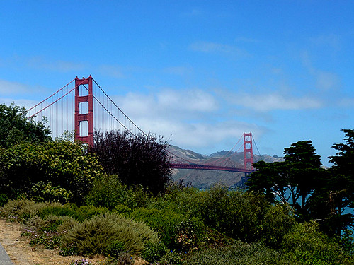 Climbing up through the Presido gives you some glimpses of the Golden Gate Bridge