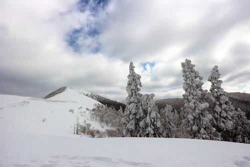 西南稜から武奈ヶ岳