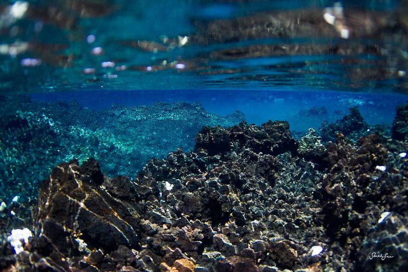 sarahlee_underwater_lava_rocks.jpg