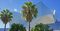 Walt Disney Concert Hall Los Angeles Ca