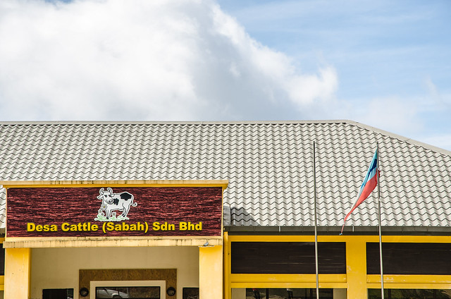 Sabah Trip: Desa Dairy Farm, Kundasang