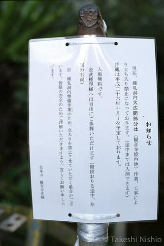 鍾乳洞案内 / cave information