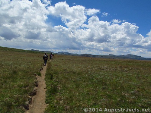 Hiking across the Flat Tops after crossing the Causeway, Flat Tops Wilderness Area, Colorado