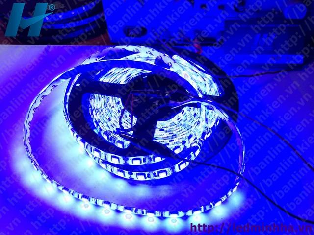 LED Dây Dán 5050 SMD ( 60Led/m ) Mầu Xanh Dương