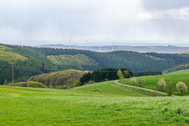 Prümtal landscape 3