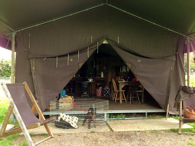 Our home at Manor Farm (Featherdown Farm)