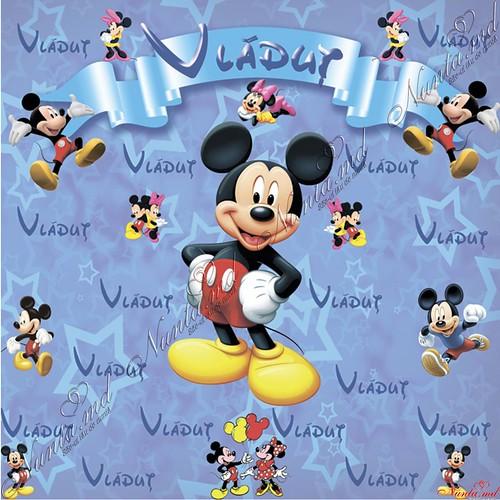 FotoStend Personalizat ! > Foto din galeria `BRAND WALL (foto pano) personalizat!`