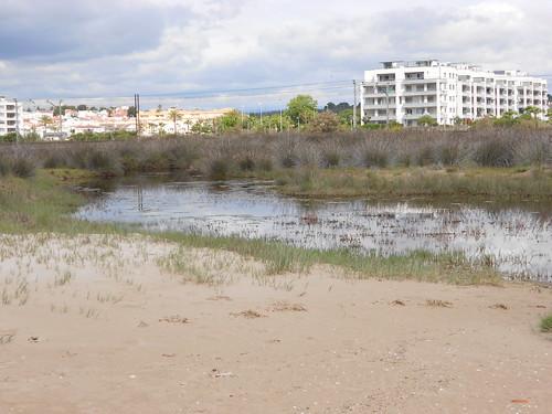 TBMCATSUR Tarragona y Terres de l'Ebre