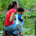 Pfister`s Pond, Tenafly Nature Center, New Jersey