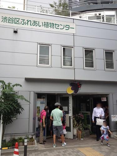 ホタル鑑賞会