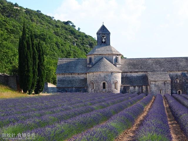 Abbaye De Senanque 薰衣草修道院