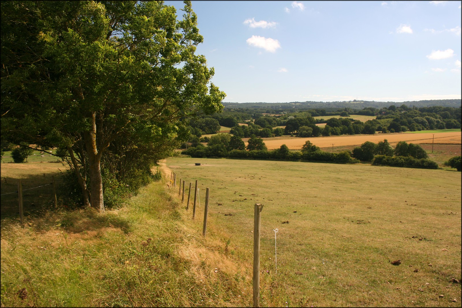 North of Westfield, East Sussex