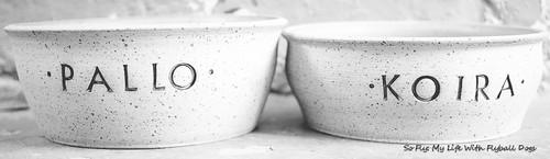 Bowls-8969