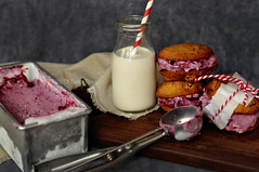 Homemade Mixed Berry Ice Cream Sandwich