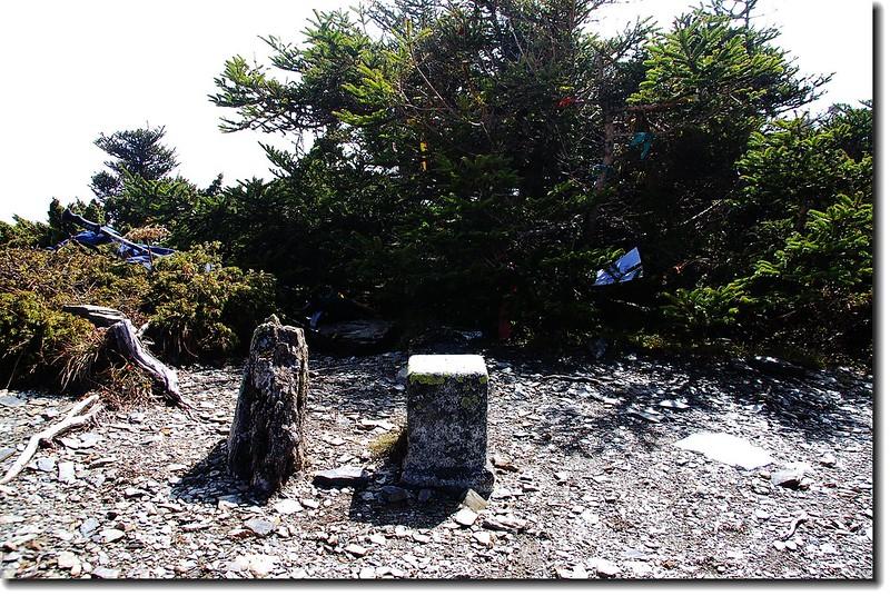 巴巴山三等三角點(# 6339 Elev. 3449 m) 3