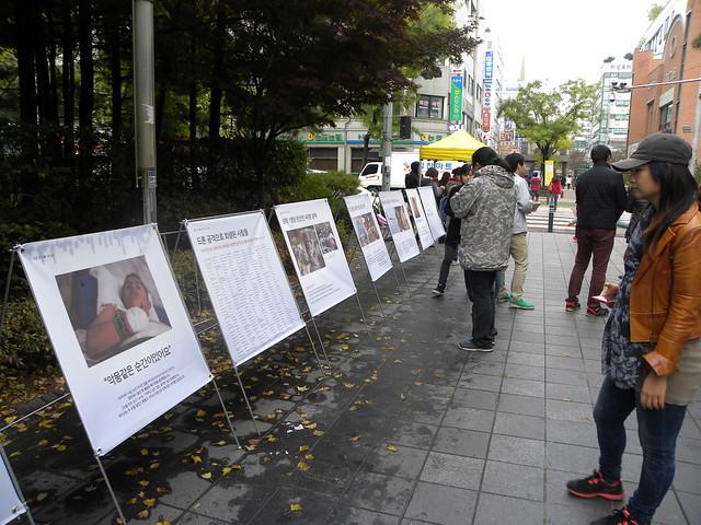 20131102_제4회 평화군축박람회 (12)