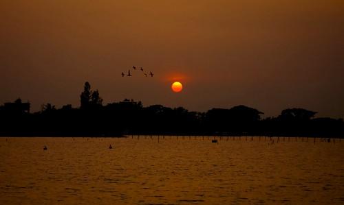 light sunset sky sun lake nature water beautiful birds silhouette river landscape evening flying warm waves sad dusk sony calm ali dhaka bangladesh shadman uttara projectweather shadmanali hazratshahjalalinternationalairportdac