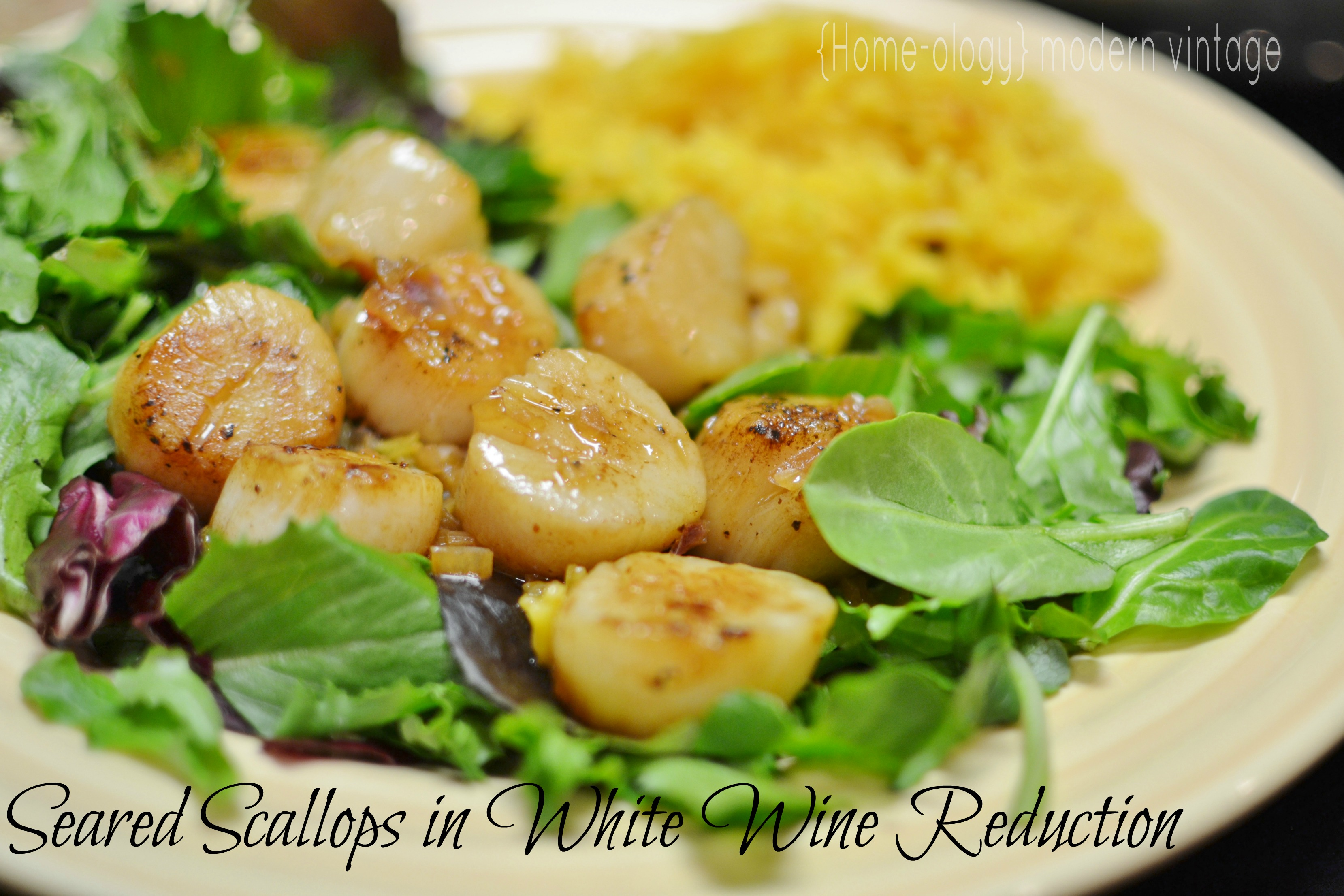 seared scallops in white wine reduction
