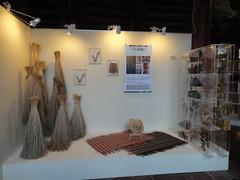 纖維植物展之大甲藺展場。(圖片來源:林業試驗所)