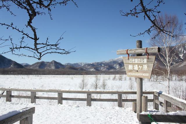 20140112_戦場ヶ原_0006