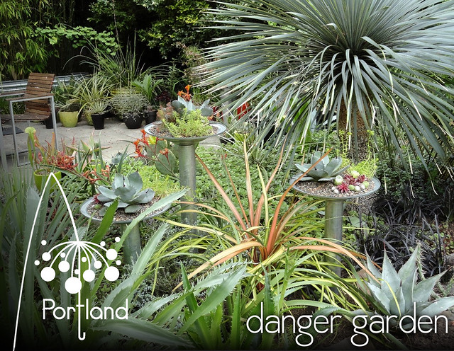 Danger Garden Set copy