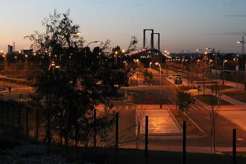 2014.02.02.152 - SEVILLA - Campus Palmas Altas