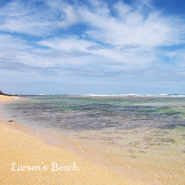 Larsen's Beach, Kauai