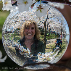Crystal Ball Cherry Blossoms-49