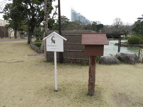 小倉競馬場の日本庭園の池にあるコイのえさ