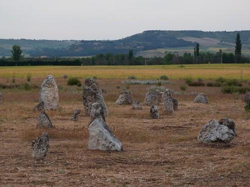 Foto de la Necrópolis de Pintia (Valladolid)