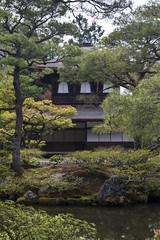 Tempio Ginkaku-ji - Kyoto