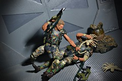 The World's Best Photos of colonialmarines - Flickr Hive Mind