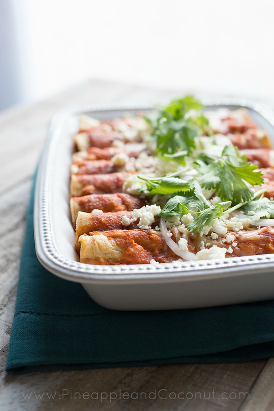 9727000301 c58329bb4a c Best Ever Chicken Enchiladas {Appreciation Post}