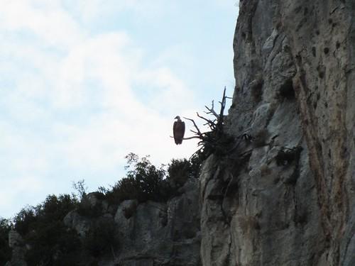 Navarra, Foz de Lumbier