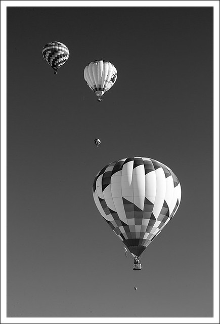 Great Forest Park Balloon Race 2013 5 BW
